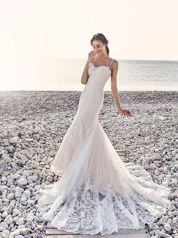 Wedding Dress Fiji Eddy K Bridal Gowns Designer