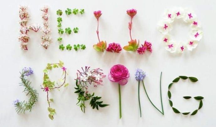 Blog_spring1