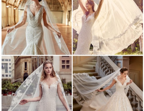 Sunday inspiration: Veils from the 2017 Collections