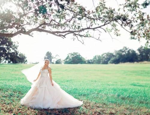 Eddy K. Bride Rachel