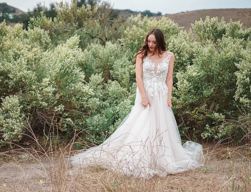 Wedding Wednesday: Styled shoot by Sparkling Soirees featuring CT199