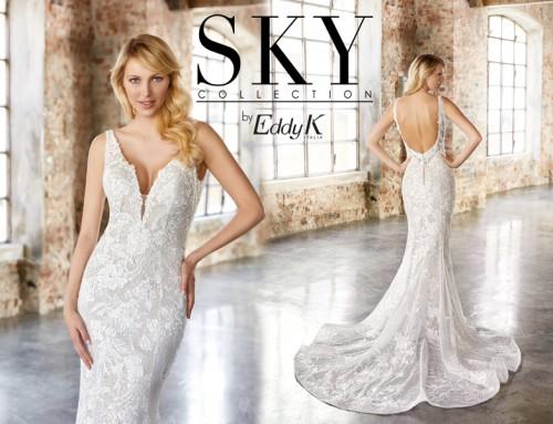 Dress of the Week: SKY165