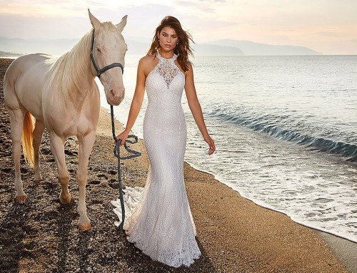Wedding Dress Bermuda