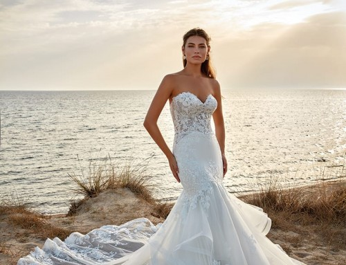 Wedding Dress Octavia | DR2219  2022 Collection